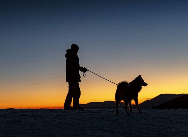 walking dog in the dark